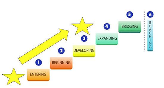 ENLACE Goal Setting Levels