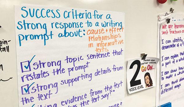 Success Criteria Classroom Walls