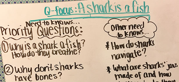Creating A Culture Of Questioning Inquiry In Lower