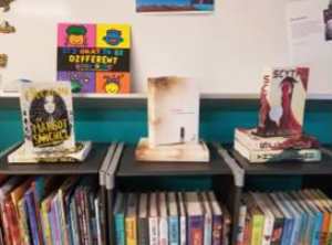 Bridging the Gap - Books